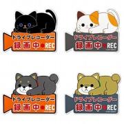 日本 MEIHO 汽車Cam錄影中動物磁石貼貓仔狗仔車貼紙